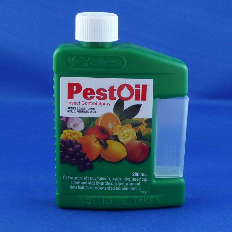 Pest Oil